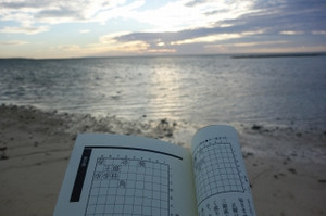 Beach_and_book